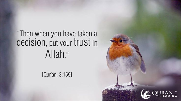 """""""Then when you have taken a decision, put your trust in Allah"""" Quran (3:159)"""