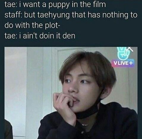 So that's why there's a puppy XD | BTS - 방탄소년당 - BTS, Bts ...