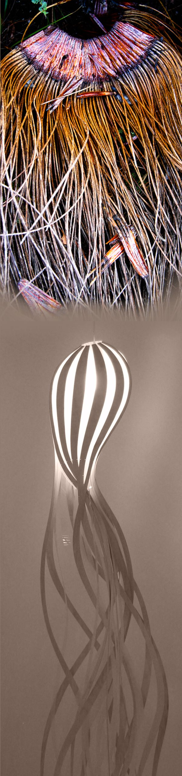 Nature takes many forms. The Squirt pendant light is shown here, unravelling, as if it's becoming part of the natural world once again.
