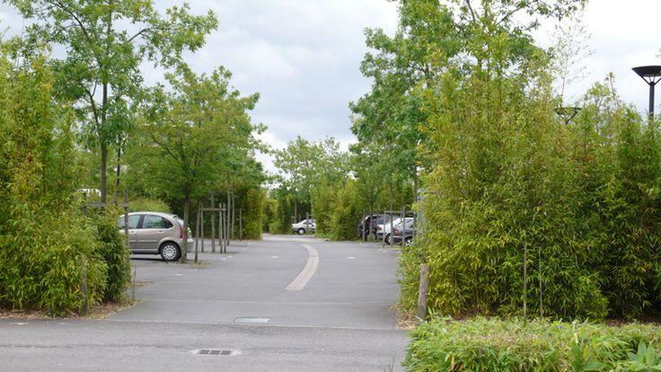Atelier de paysages Bruel Delmar - Quartier de la Morinais - Les espaces publics