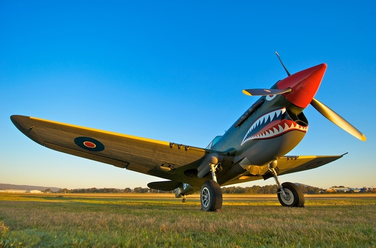 Curtiss-Wright, produced engines, planes and propellors. The P-40 was used by all the major allies and 28 countries in total. Used thoroughout WW2. Ironically designed by Donovan Berlin.