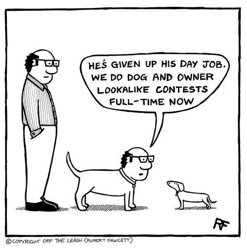 757 Best Dog Cartoons Images Dog Cartoons