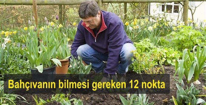 Huffigtan Post Green, yeşile hasret şehirlerde, bahçıvanlık yapmanın mümkün olduğunu iddia ediyor. İşte şehirde bahçe yönetmenin 12 püf noktası...