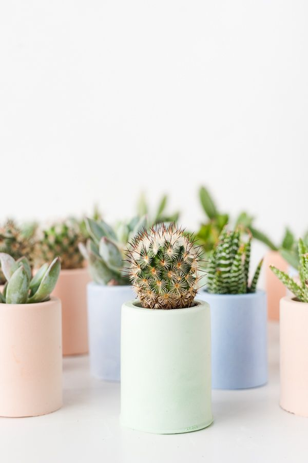 Plaster Pusher: How to Color Plaster with This Secret Ingredient + DIY Plaster Mini Planters - Paper and Stitch