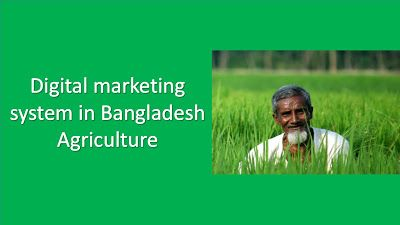 Minciter: Digital marketing system in Bangladesh Agriculture...