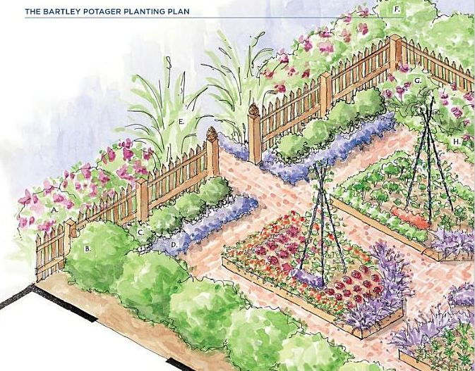 Designing A Garden garden arbor drawing david despau The Bartley Potager From Designing The New Kitchen Garden By Jennifer Bartley This