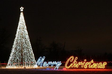 """rope light christmas signs 