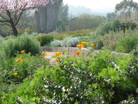 South Coast Botanic Gardens Field Trips Pinterest