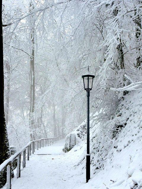 Ein Wintermärchen  , schöner Aufstieg zur Burg, Brrrrrh - so cold , 393 by roba66, via Flickr