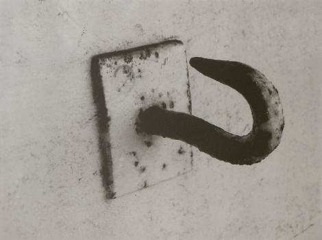Peter Peryer - Auckland Art Gallery