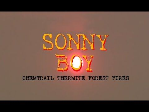 Sonny Boy : The Continental Version