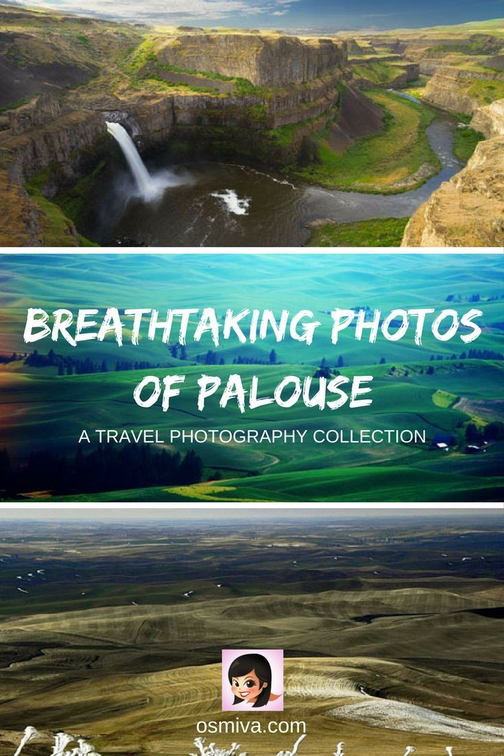 For a glimpse of the picturesque captures of the region, Breathtaking Photos of Palouse compiles some amazing shot from photographers around the world. Palouse, Washington State, US
