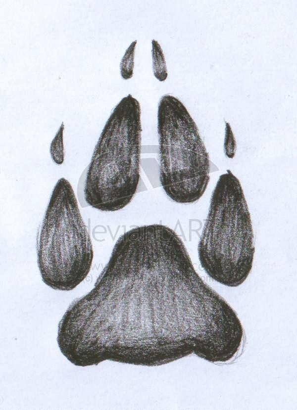 wolf paw tattoo sketch