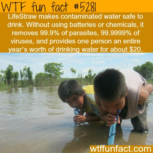 "LifeStraw - A Year's worth of ""PURE"" drinking water for $20.00!  ~WTF fun facts"