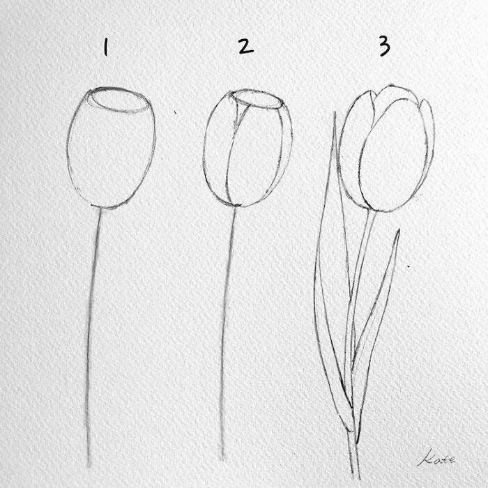 Pretty Flowers To Draw Step By Step Diy Tutorial Black Pencil Sketch White Background In 2020 Easy Flower Drawings Art Drawings Simple Drawings