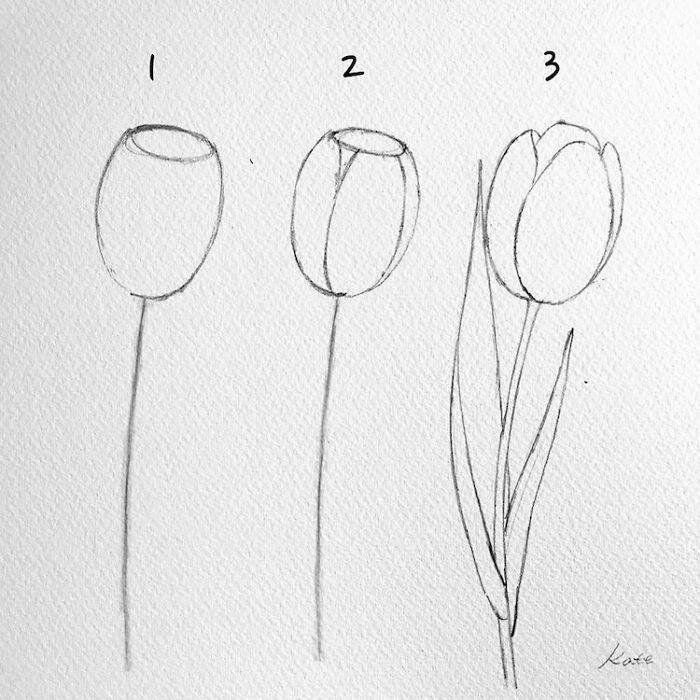 Pretty Flowers To Draw Step By Step Diy Tutorial Black Pencil Sketch White Background Easy Flower Drawings Art Drawings Simple Drawings