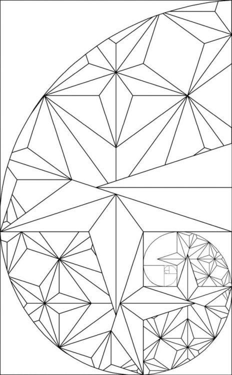 17 best images about golden ratio phi pi fibonacci on pinterest fractals in nature the. Black Bedroom Furniture Sets. Home Design Ideas