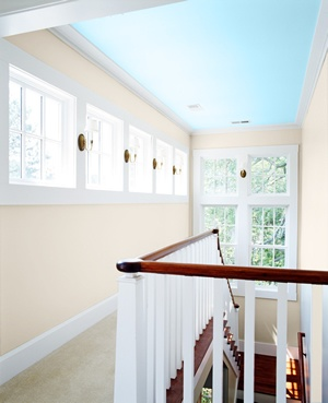 Elevate Your Style with Ceiling Color