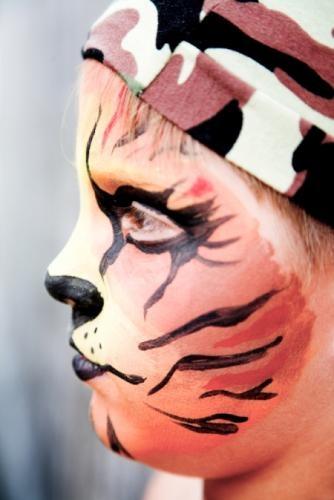Fantasy Face Paint  Fi...