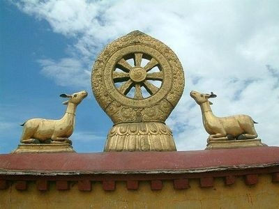 What is the Meaning of a Dharma Wheel?