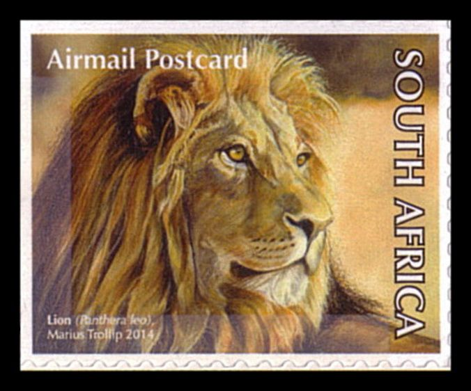 South Africa [self adhesive] Big 5 booklet / Lion