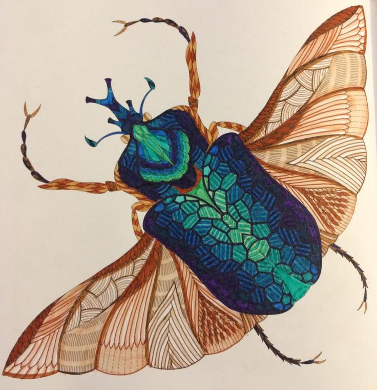 Coloured By Georgina Black. First one from 'Wild Savannah', a scarab beetle done with Kuretake Zig Writer pens..