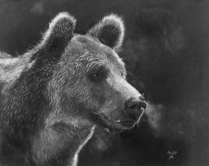 Maya et l'Ours Dessin au crayon blanc sur papier noir 49x39cm