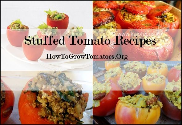 http://howtogrowtomatoes.org/simple-tomato-recipes/  click the image for instructions.  tomato stuffed recipes.