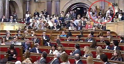 Un grup espanyolista fa gestos ultres i provoca incidents al Parlament