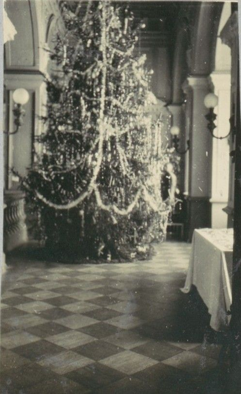 The last Christmas tree at Gatchina Palace - home of Empress Marie Feodorovna -1916 .