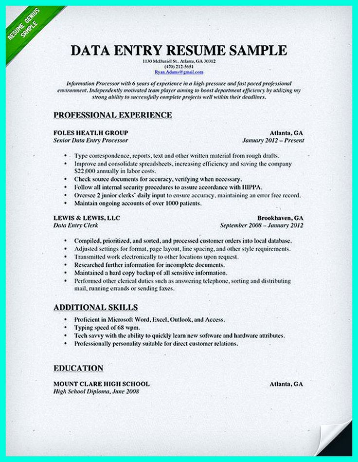 sample data entry resume - Intoanysearch