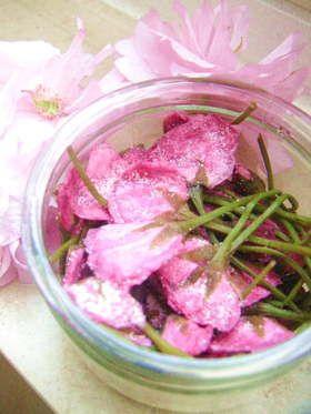 手作り♪桜の塩漬け