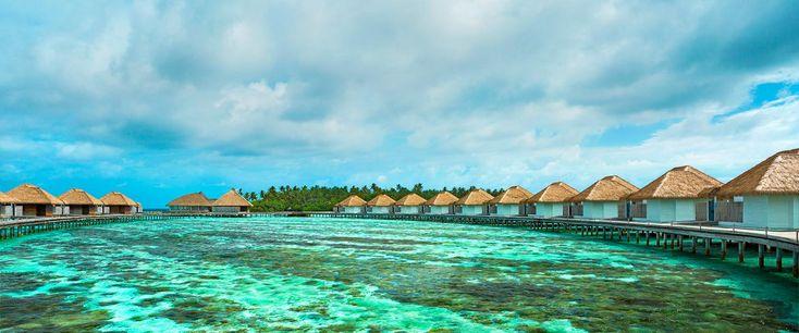 Accommodation - Maldives Luxury Resort | COMO Maalifushi, The Maldives