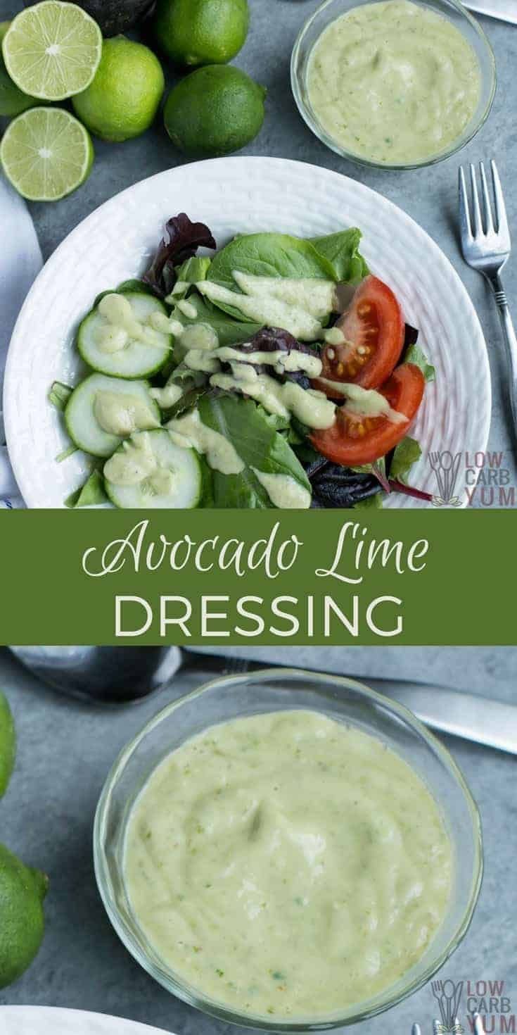 A Dairy Free Avocado Dressing With No Sour Cream Or Yogurt Making It Paleo Friend And Low Inflamma Delicious Salad Dressings Dairy Free Salads Delicious Salads