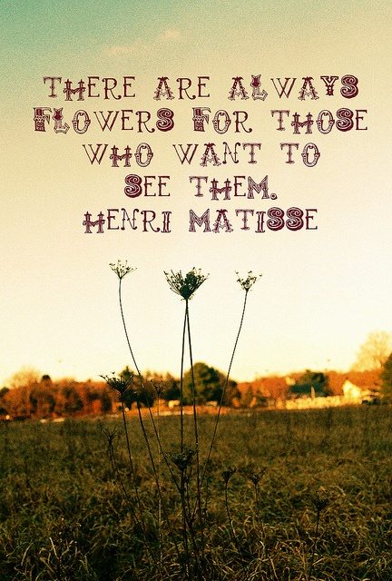This is particularly fitting for us. We will always see the flowers! Great quote by a great artist, Matisse