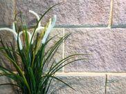 Landscape design. Sandstone wall.  Natural stone cladding. Landscape architecture.   Exterior design. Landscape idea. Garden design. Garden idea. Landscapers. Exterior cladding. Exterior idea. Outdoor design. Outdoor idea. Stone Fireplace. Architects  Landscape architects. Feature wall Granite  Limestone