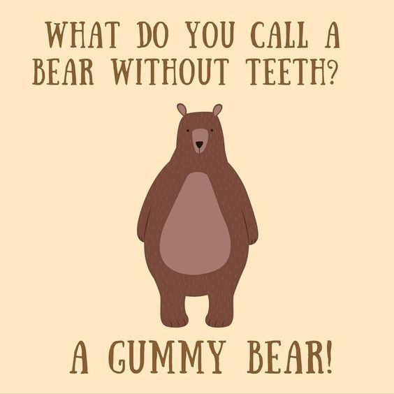 What do you call a bear without teeth?