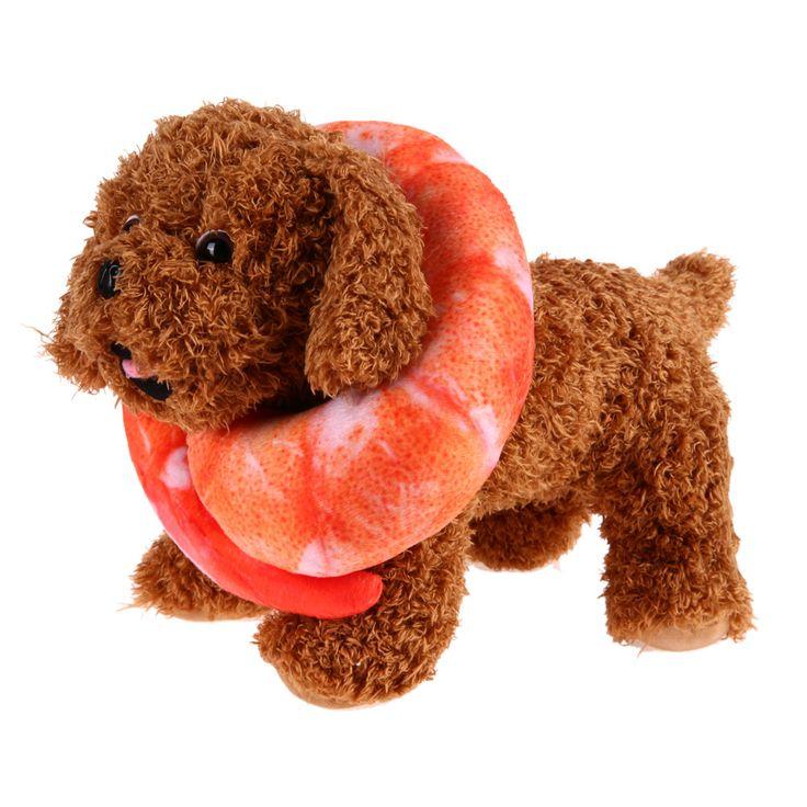 Best 25 Pet Shrimp Ideas On Pinterest Homemade Dog