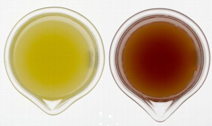 "There's no question when you look at Arctic® Golden juice vs. Conventional Golden juice which one actually looks ""Golden""! The same advantage holds true for sauces, smoothies, and other apple applications too!"