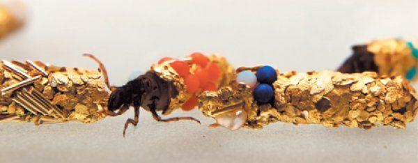 Et naturligt perlesmykke. I 1980'erne fik en fransk kunstner en rigtig spændende ide – han havde længe studeret, hvordan vårfluelarverne byggede deres hus af sten og træ, men hvorfor ikke lade dem bygge huse af guld, perler og ædelstene? Som tænkt, så gjort – og ud af det kom der nogle fantastiske små kunstværker. Hubert Duprats smukke vårfluer.  Lav selv vårfluekunst. I kan også lave kunstværker og smykker med hjælp fra vårfluelarverne. Først skal I fange nogle vårfluelarver, der bygger hus…