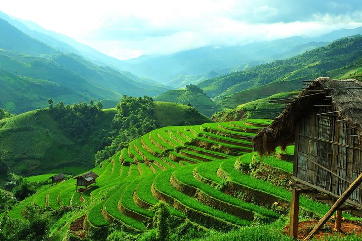 The great scenery from Ba Nha - Mu Cang Chai in the middle of the rice crop. This is one of the most amazing scenery of terrace rice field you can visit in Vietnam.