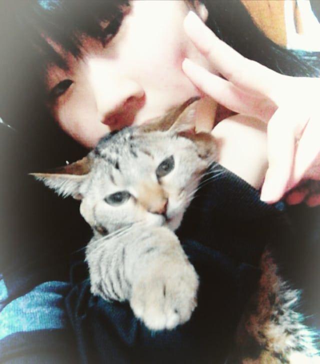 : 🎍2018年🎍 ✴あけまして  おめでとう  ございます🆕🌄 ✴  2018年スタートを家族で迎えることができました❗ 楓(ふう)🐾ともども😻 どうぞよろしくお願いいたします✴✴✴✴✴ : 2018年❇❇みなさまにとっても 素晴らしい年になりますように❗❗🍀🍀 : #2018年スタート 🆕🌄 #あけましておめでとうございます #娘と楓のpic 💕💕 #のら猫出身 #下半身不随猫  #オムツ猫 #猫 #ねこ #ネコ #cat  #にゃんらいふ #愛猫  #我が家に来てくれて #2度目のお正月 #おやんちゃ  #和裁復活 #期待と不安  #愛娘 #受験生 #頑張れ頑張れ ✊  #愛息 #大学生 #あと3年 #バイトも #頑張れ頑張れ ✊  #可愛い #彼女と #仲良く🎵🎵 #大切に  #みなさまにとって素晴らしい一年になりますように 🍀🍀🍀🍀🍀 #2018年もよろしくお願いいたします