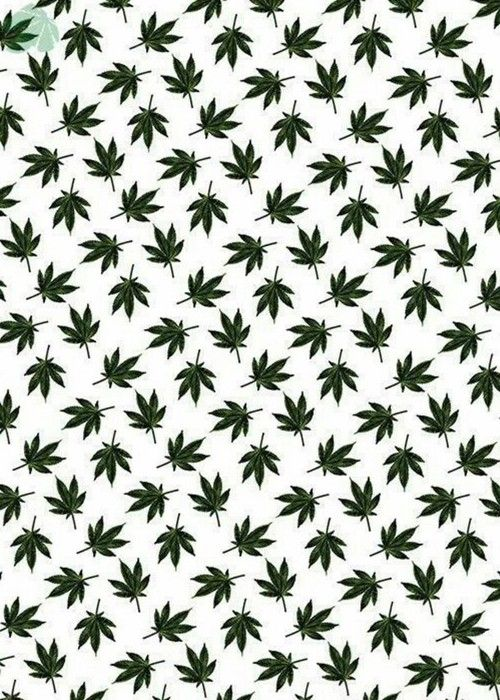 weed, background, and wallpaper kép