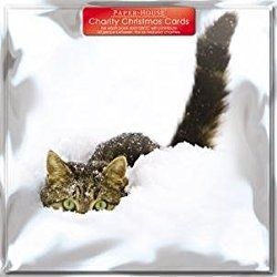 Tabby Cat in Snow Charity Christmas Cards - Cards Sold In Support of British Heart Foundation, Age UK, Tenovus, Motor Neurone Disease, NSPCC and Diabetes UK by GBCC