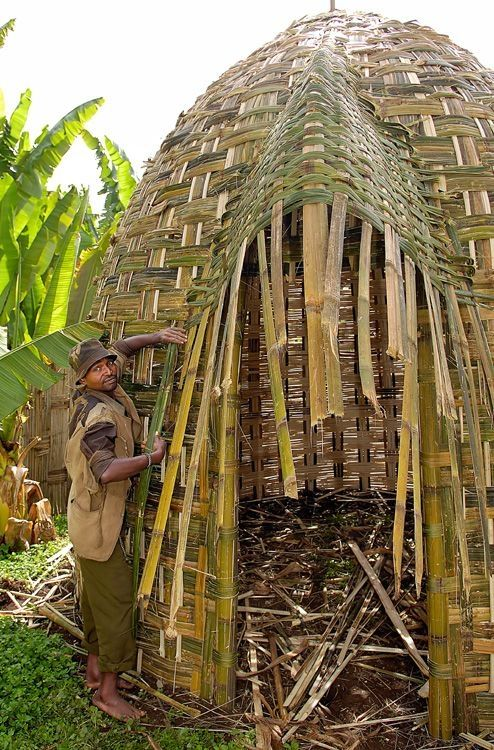 Africa | A Dorze man building his home in the Chencha, southern Ethiopia.  The Dorze people are famous for their huge huts, resembling a giant beehive. Although these huts look fragile, they can last up to 60 years. The about 12 metres high huts, looking like a beehive, are constructed with vertical hardwood poles and woven bamboo and have thatched roofs of enset (false-banana) | © Sergio Pessolano by marilyn
