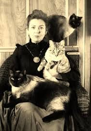 Image result for vintage photo victorian cat lady