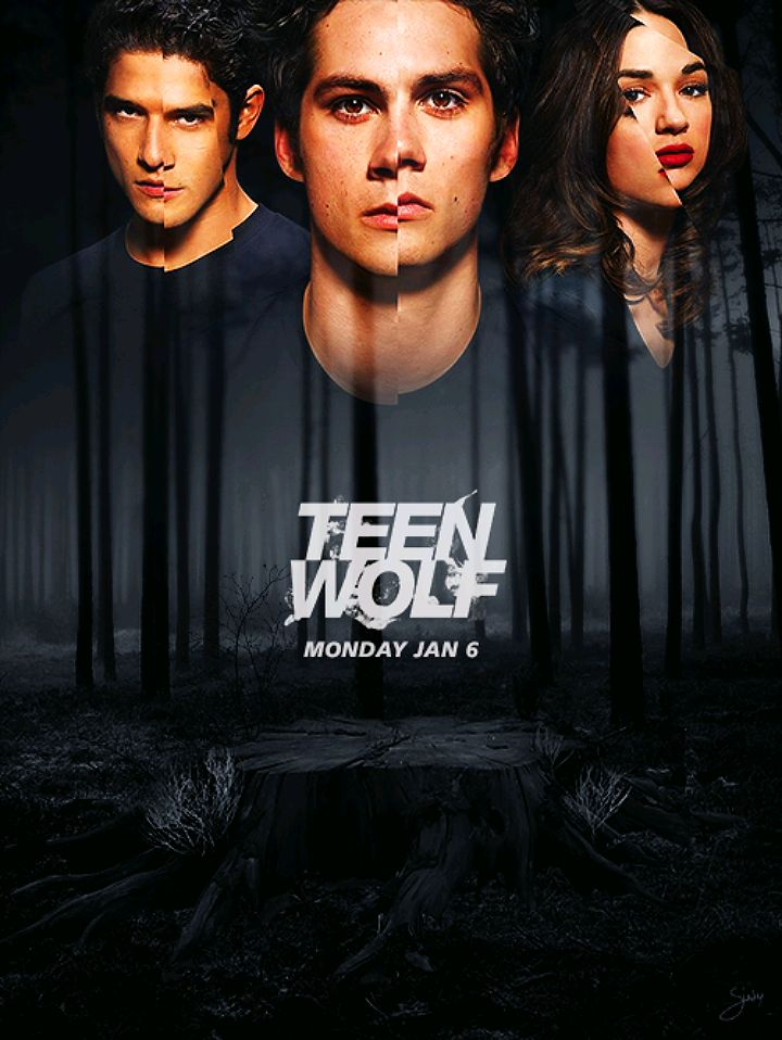 """Teen Wolf (Anyone else think that the theme song for season 3B should be """"Outta Your Mind"""" by LMFAO???)"""