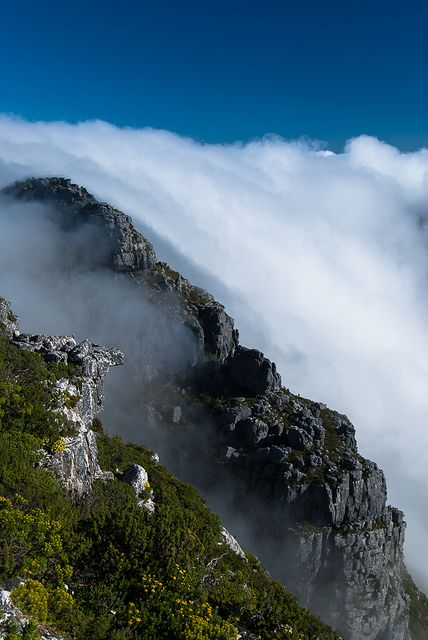 Table Mountain National Park, South Africa; photo by .William Asanome