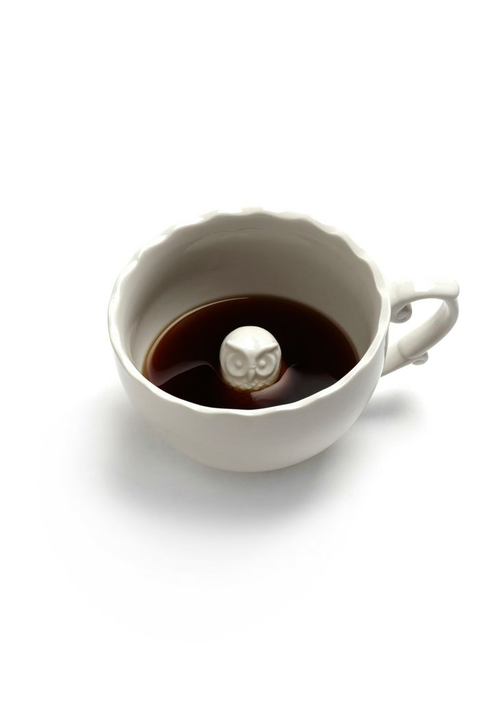 {surprise!} an owl in a cup. so cute.