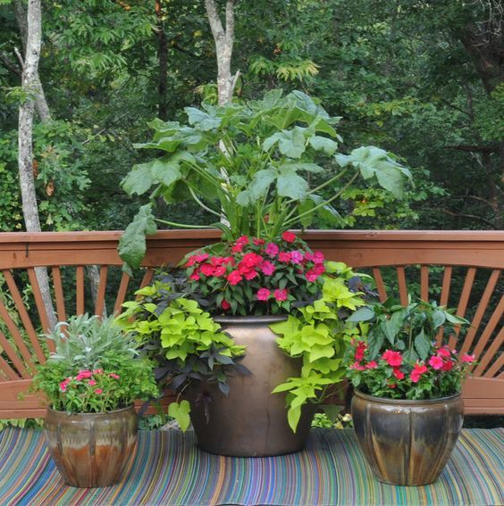 96 Best Images About Wpc Planter Pot: 91 Best Images About Container Gardening, Landscaping On